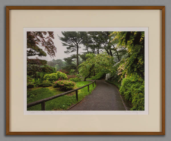 option two a 16x20 framed print of a 15x10 image